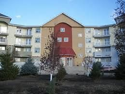 2 Bedroom Condo Available Now! in AIRDRIE. Small Pets Allowed.