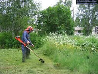 Im looking to test out my petrol strimmer.