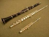 music lessons  flute, clarinet, saxophone, drum, piano,gutar etc