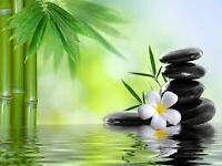 Chinese Massage .... Relax, body & soul