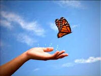 Transformational Life Coach Sessions - Transform your life now!