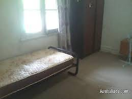 1 Room looking for 1 male in strathfield $150 include bills Strathfield Strathfield Area Preview
