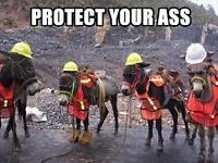 Health and Safety Pro