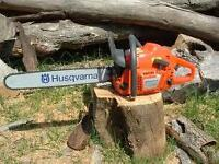 TREE REMOVAL - 25% off until Oct 15