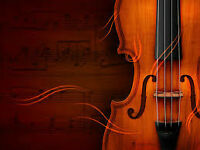 Solo Violinist for Weddings and Special Events