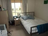 Nice and clean double room to rent in Brixton