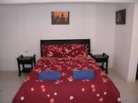 Lovely double room in Dulwich/Herne Hill