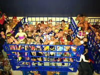 LOOKING: Lutteurs figurine/ for cheap prices. WWF WWE WCW