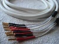 Chord Rumor 4 bi wire speaker cable