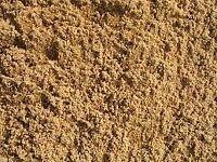Washed building sand