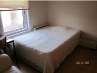Great double room available