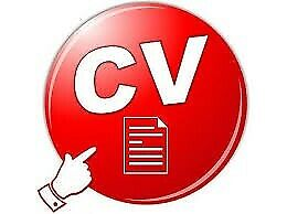 Job CV| Business Plan| Bookkeeping| Virtual Assistant| Cover Letter|LinkedIn Resume Writing Services