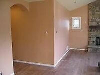 If you are looking for a professional painter