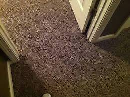 Remarkable Carpet laying service Ashfield Ashfield Area Preview