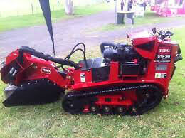 AFFORDABLE STUMP GRINDING AND REMOVAL. Kingston Kingston Area image 1