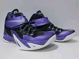 Nike Lebron Zooms Soldier 8s