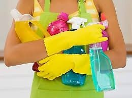 PERMANENT LADY CLEANER LOOKING FOR MORE WORK- HOUSEKEEPING, CLEANING, IRONING