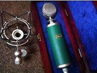 Blue Kiwi Microphone