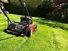Lawn Mowing, edging, etc Quakers Hill Blacktown Area Preview
