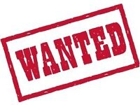 Wanted-basketball/netball hoop/ring/post.