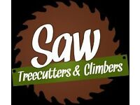 Tree Surgery,Tree Surgeon,Gardening , Stumps Removal, Garden Service, Tree Cutting, Insured