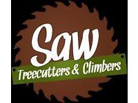 Tree Surgery, Garden Maintenance, Decking, Stumps Removal, Garden Service, Tree Cutting, Insured