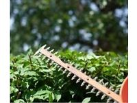 Garden Services and Maintenance in the Belfast , Lisburn , Moira and Dromore Areas