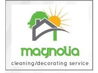 CLEANING-DECORATING WINDOWS/CARPETS/IRONING SERVICE/ Best offer ever!first cleaning half price!