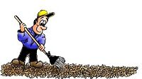 YARD CARE / GARDEN CITY & WEST KILDONAN