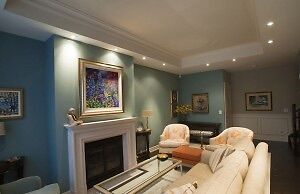 Why wait? Remove and smooth with us. Oakville / Halton Region Toronto (GTA) image 1