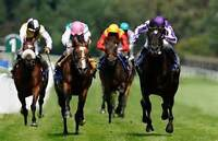 F/T positions at busy Off-track Betting & Hospitality venue