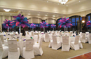 WEDDING & EVENT DECOR, EVENT DECORATOR Edmonton Edmonton Area image 6