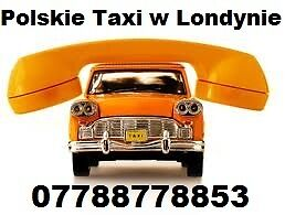 Polish MiniCabs to Airports 07788778853 Polskie Taxi Londyn Na Luton Stansted Gatwick Heathrow City