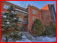 Bedroom + Private Bathroom in spacious 4½ – Downtown / Plateau.