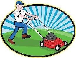 MOWING/ GARDEN CARE (GARDEN LABOUR) Springfield Lakes Ipswich City Preview
