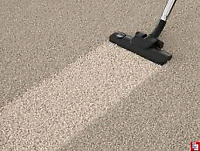 5 Star Carpet And Upholstery Cleaning Services