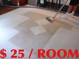 18yrs STAIN REMOVAL EXPERT  Carpets, Upholstery, Rugs, PET STAINS Brighton Holdfast Bay Preview