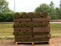 SOD SOD AND AWAY..Your Sod Laying Technician