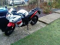 White Honda CBR for sale. Great runner, perfect for new rider