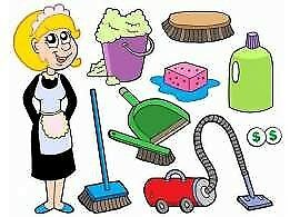 Domestic cleaning. Office cleaning. West London
