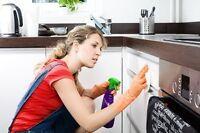 Offre emploie étudiant - travaux ménager