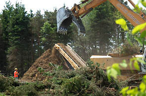 Stump Grinding - Wood and Construction Waste Removal Stratford Kitchener Area image 4