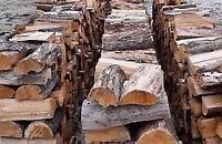 Hardwood firewood,  dry maple and read oak