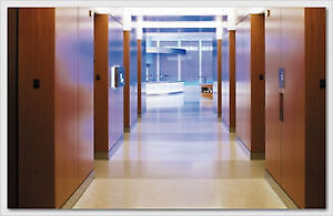 Best Cleaning Solution in Town London Ontario image 2
