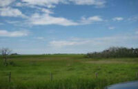 Land Available Near Town Of Stettler
