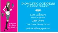Casual Cleaning professional needed