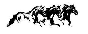 2 RV TRUCK HORSE TRAILER DECALS GRAPHICS Stickers -941