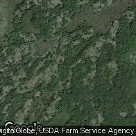 Hunting and Forest Land for Sale