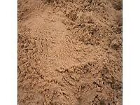 Bags of Building Sand (18 in total) 25/30kgs per bag