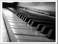 Piano /Keyboard